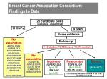 breast cancer association consortium findings to date