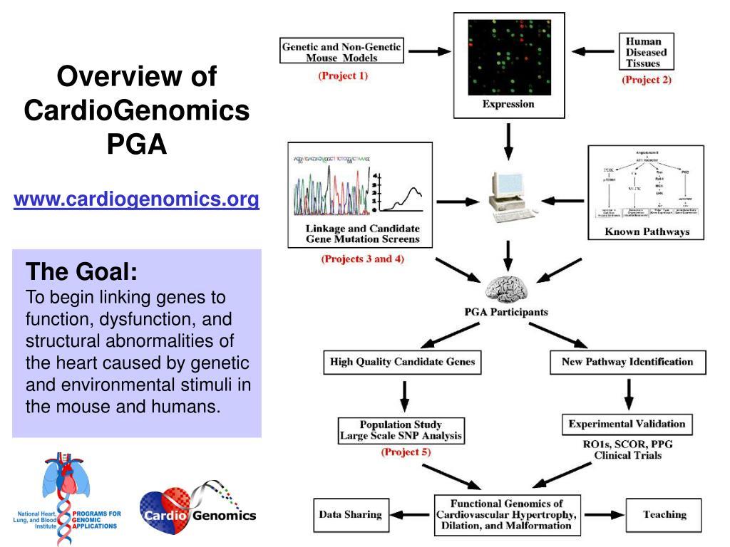 Overview of CardioGenomics PGA