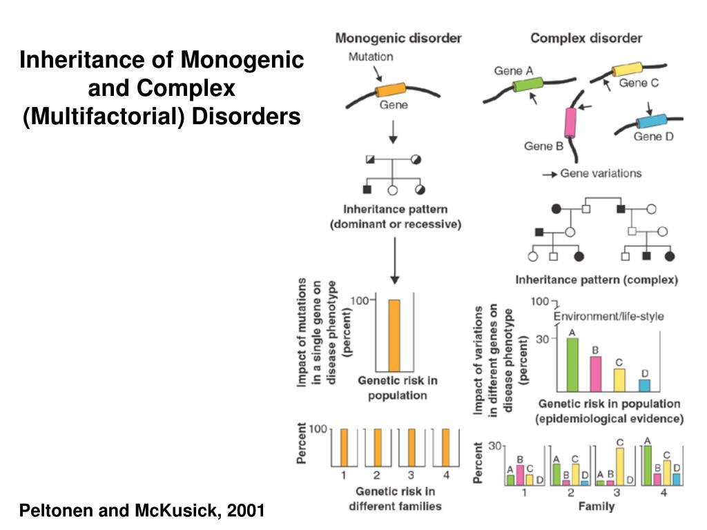 Inheritance of Monogenic and Complex (Multifactorial) Disorders