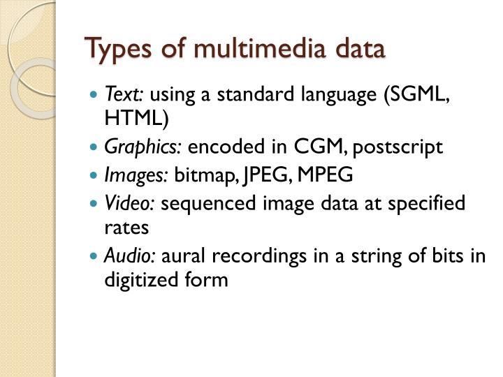 Types of multimedia data