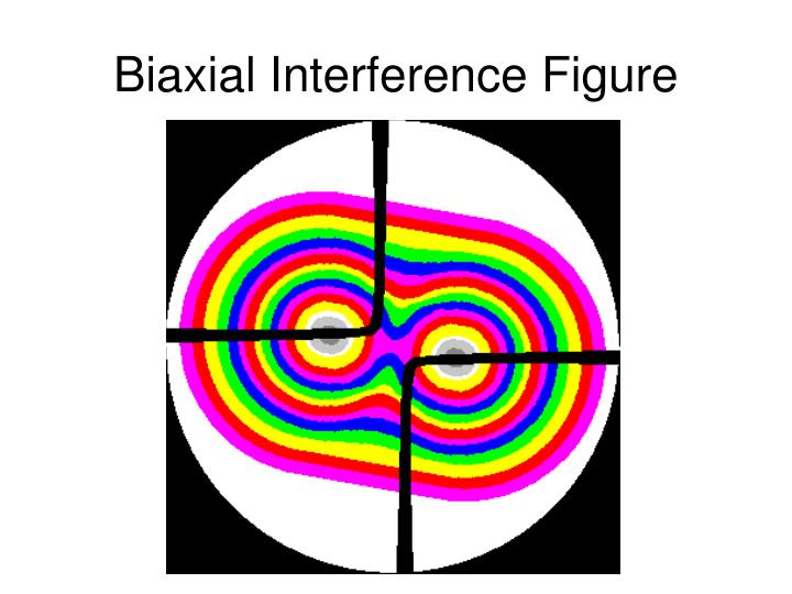 Biaxial Interference Figure