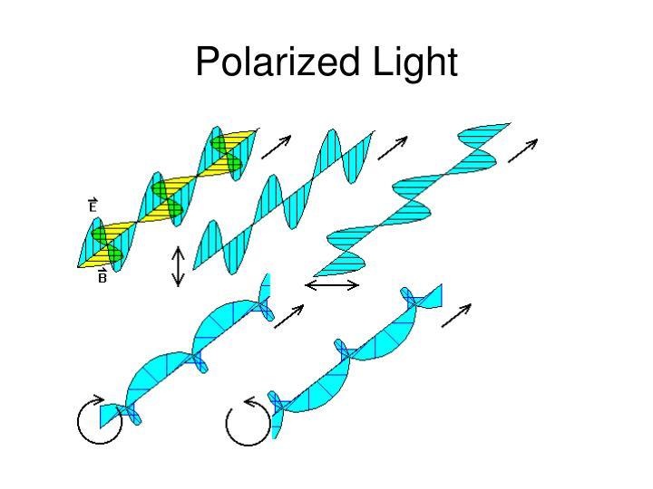 Polarized light1