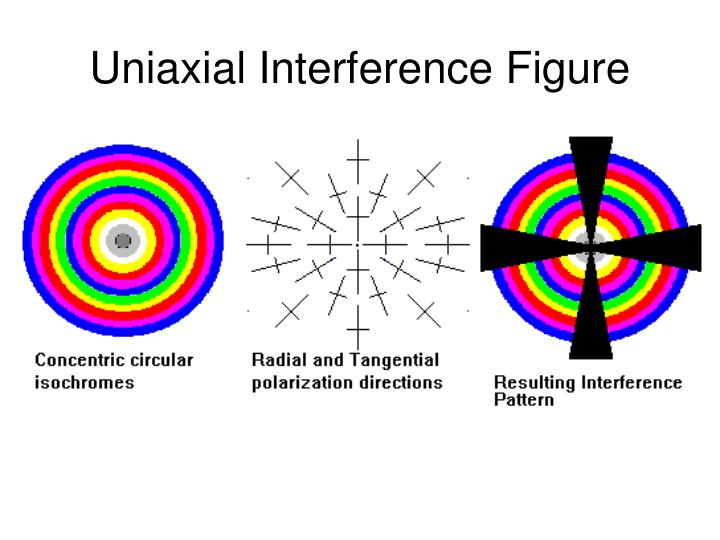 Uniaxial Interference Figure