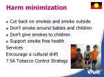 harm minimization