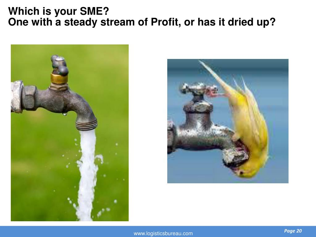Which is your SME?