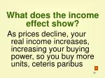 what does the income effect show