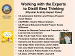 working with the experts to distill best thinking physical activity expert panel