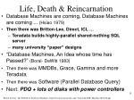 life death reincarnation