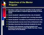 objectives of the mentor program