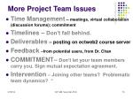 more project team issues