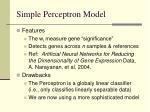 simple perceptron model25