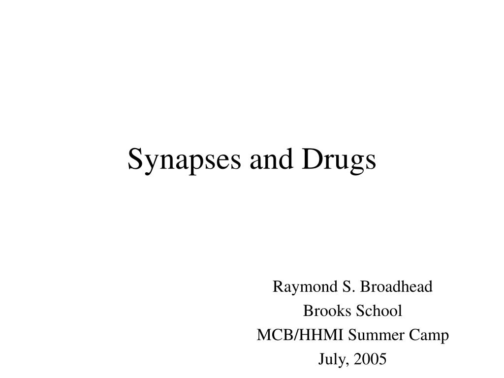 synapses and drugs l.
