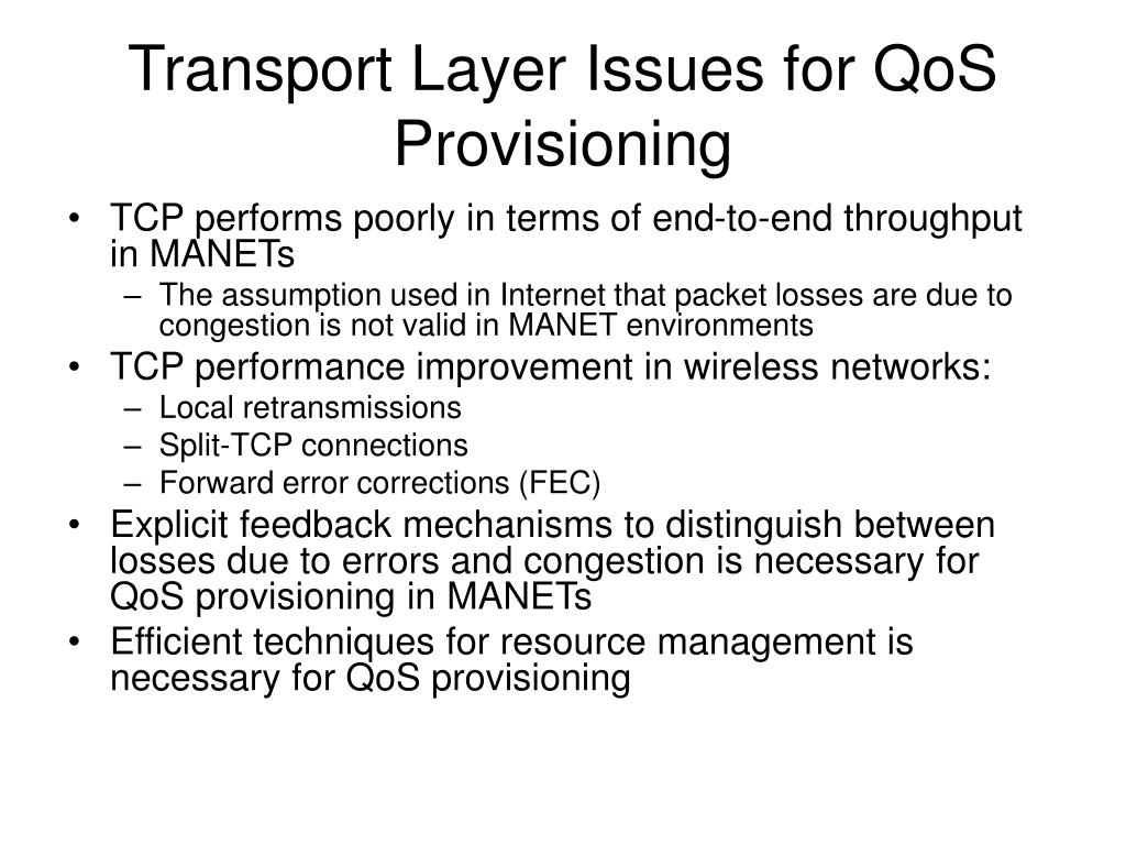 Transport Layer Issues for QoS Provisioning