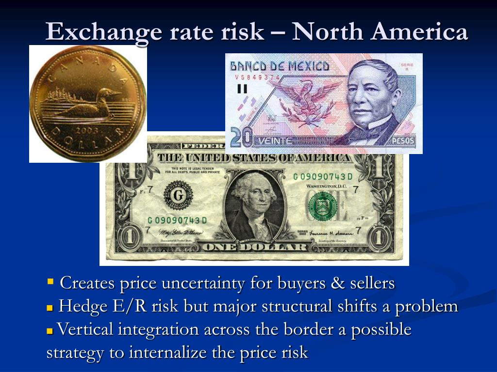 Exchange rate risk – North America
