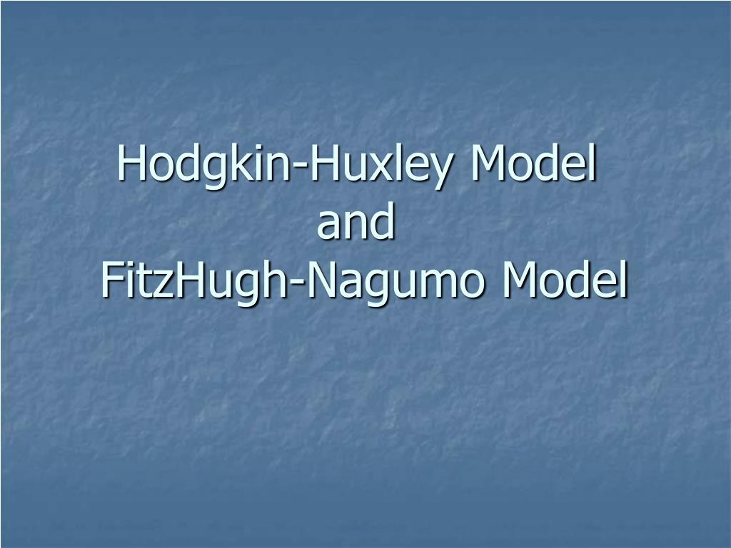hodgkin huxley model and fitzhugh nagumo model l.
