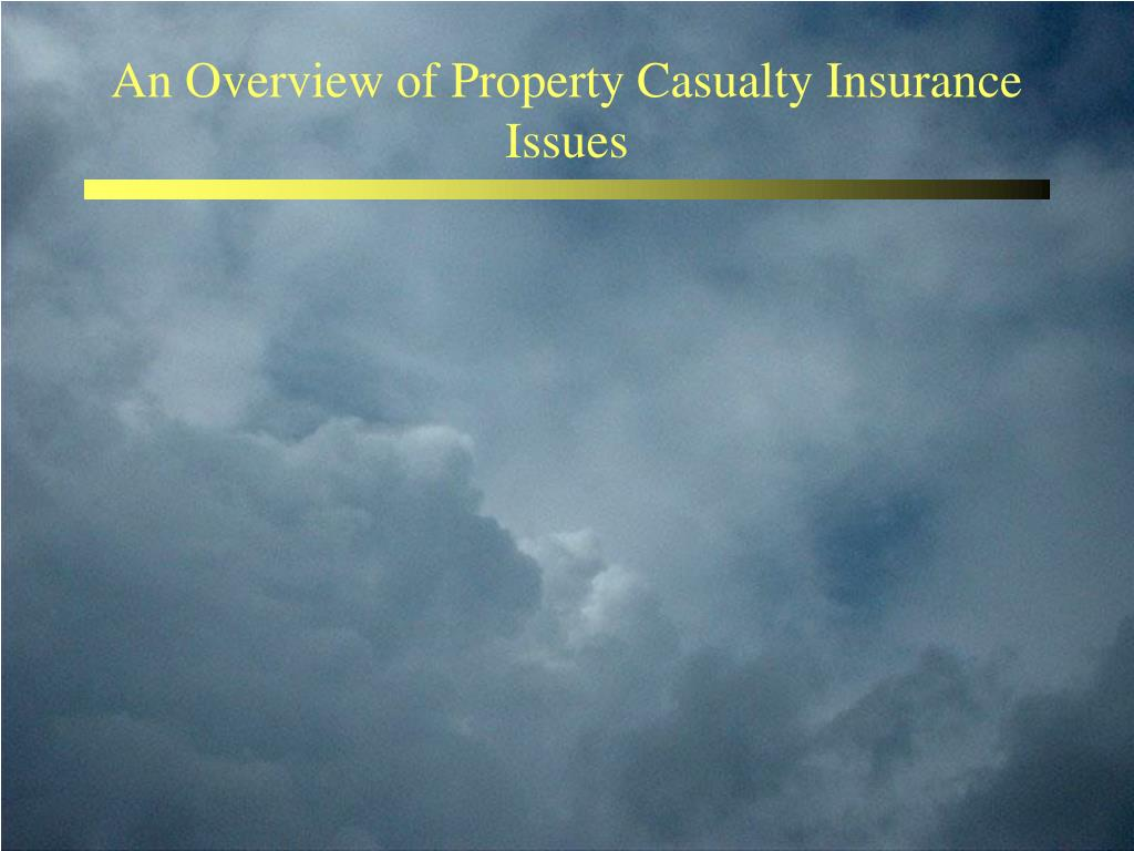 An Overview of Property Casualty Insurance Issues