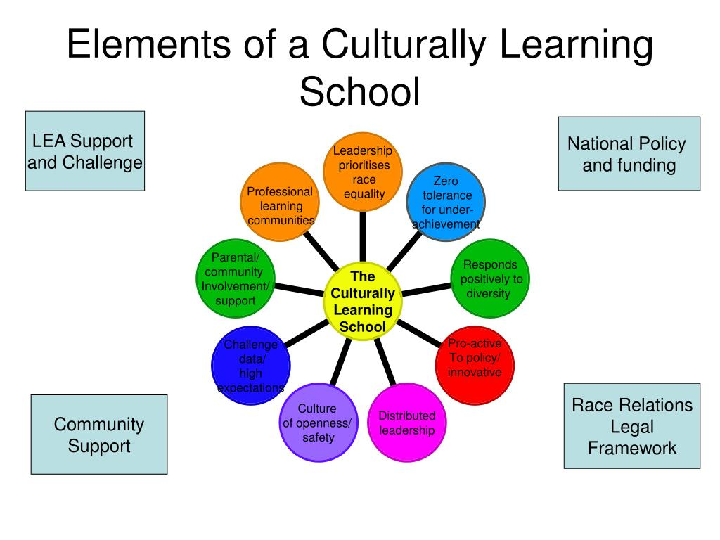 Elements of a Culturally Learning School