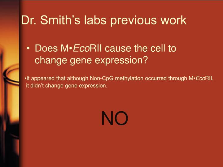 Dr. Smith's labs previous work