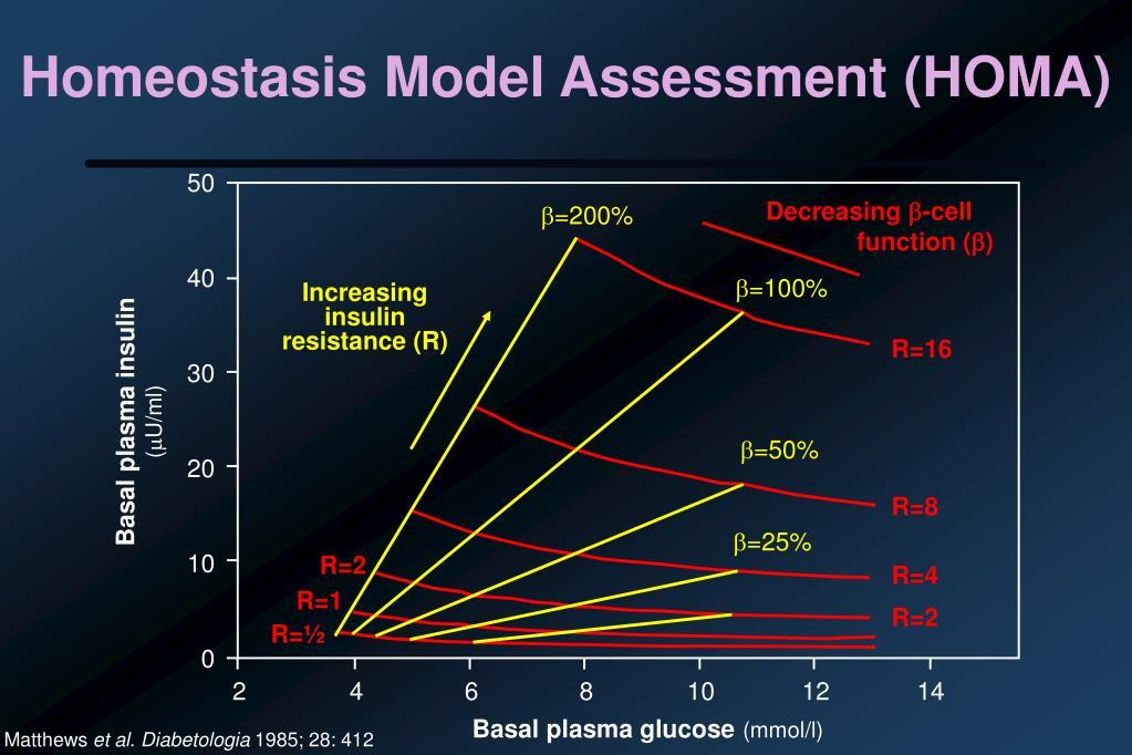Homeostasis Model Assessment (HOMA)