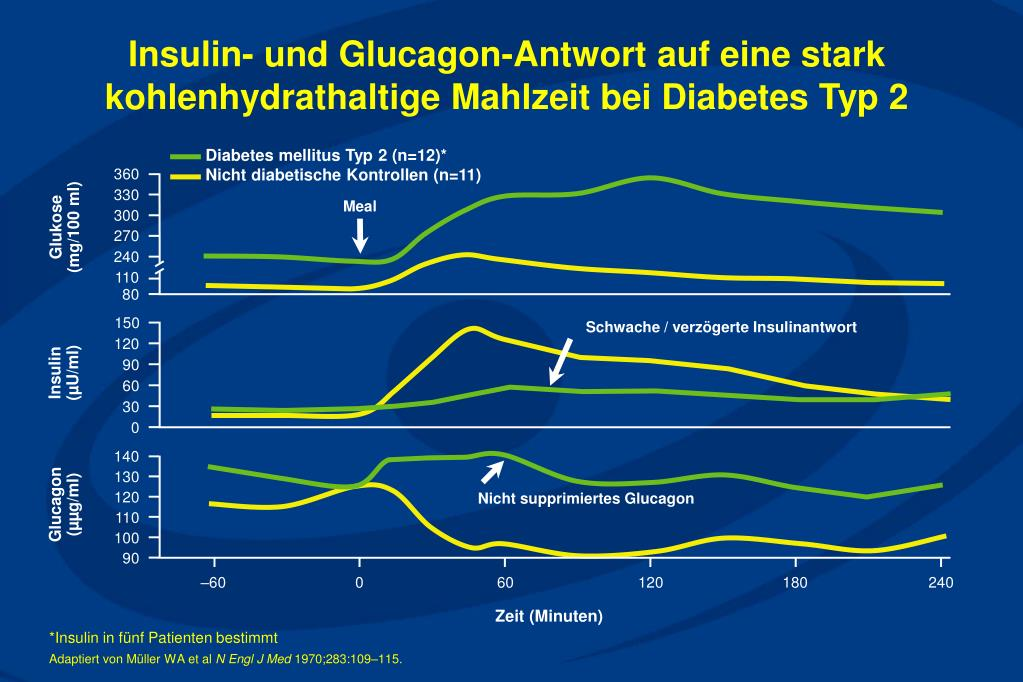 Schwache / verzögerte Insulinantwort