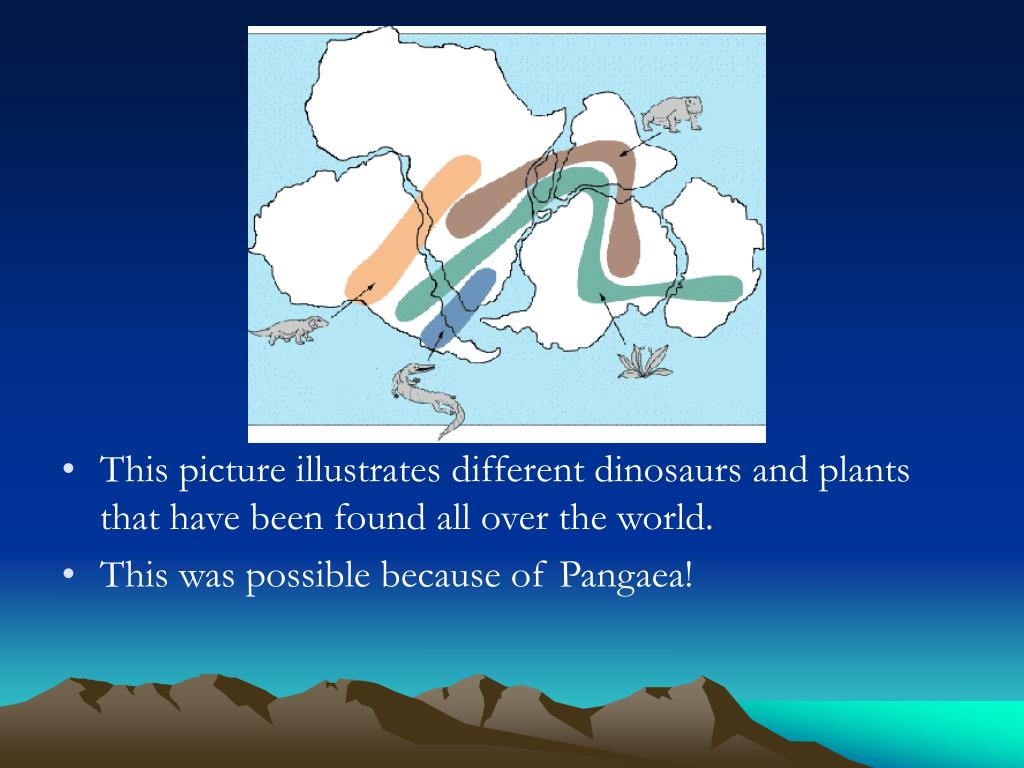 This picture illustrates different dinosaurs and plants that have been found all over the world.