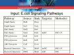 input e coli signaling pathways