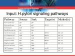 input h pylori signaling pathways