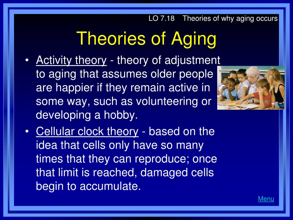 LO 7.18    Theories of why aging occurs
