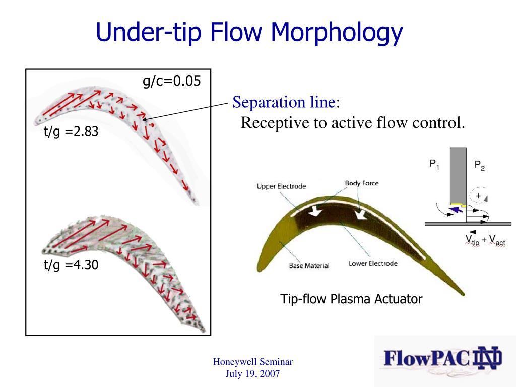 Under-tip Flow Morphology