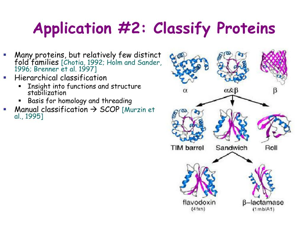 Application #2: Classify Proteins
