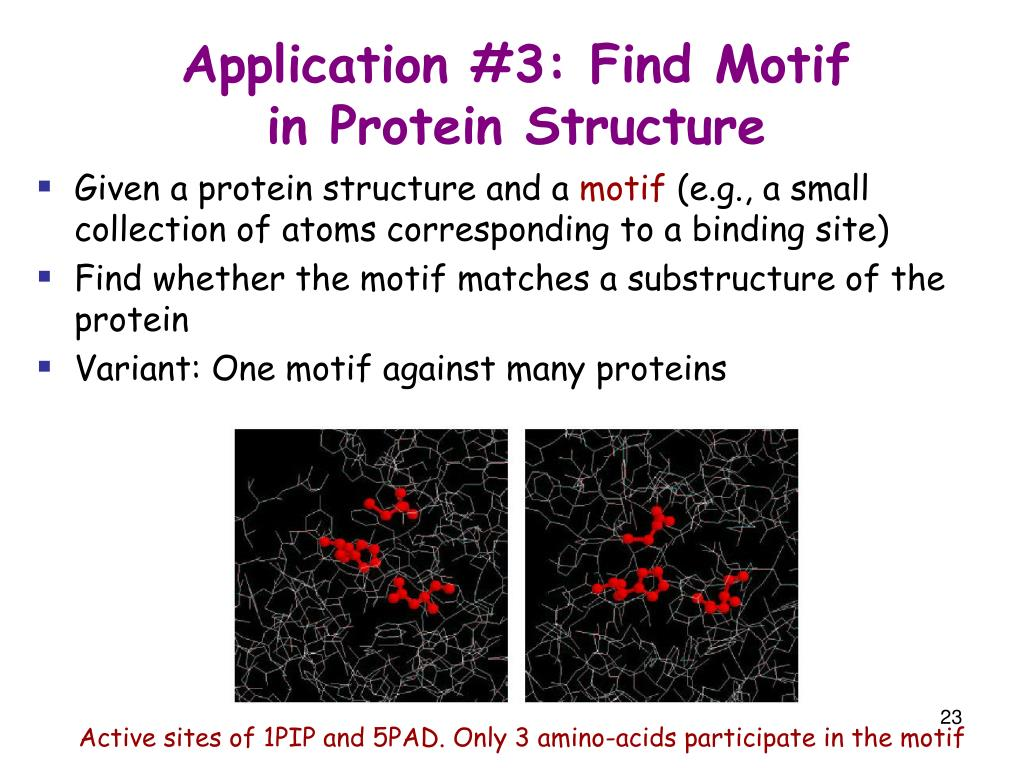 Application #3: Find Motif