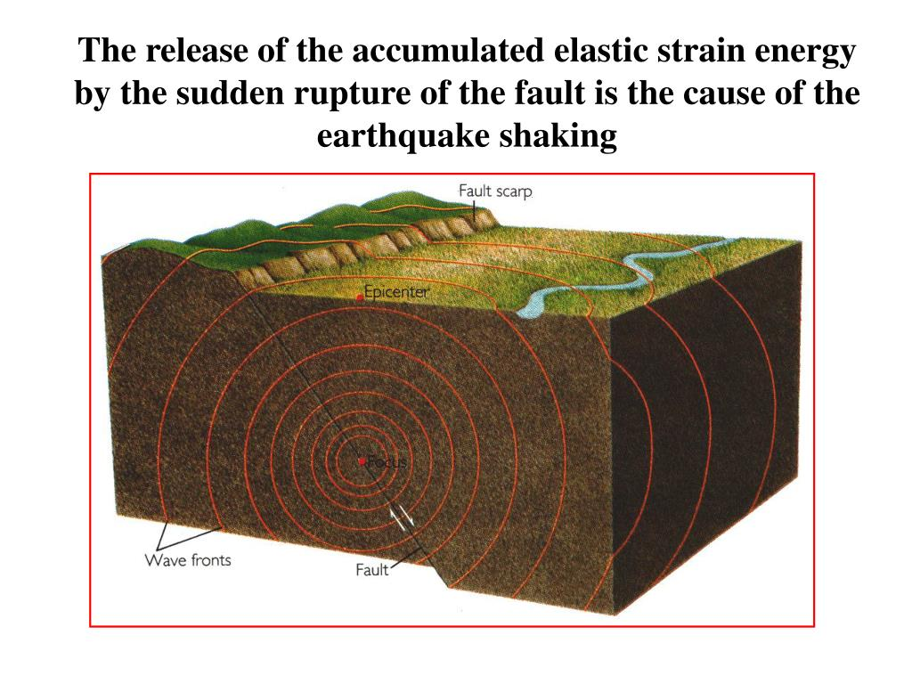 The release of the accumulated elastic strain energy by the sudden rupture of the fault is the cause of the earthquake shaking