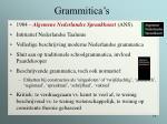 grammitica s19