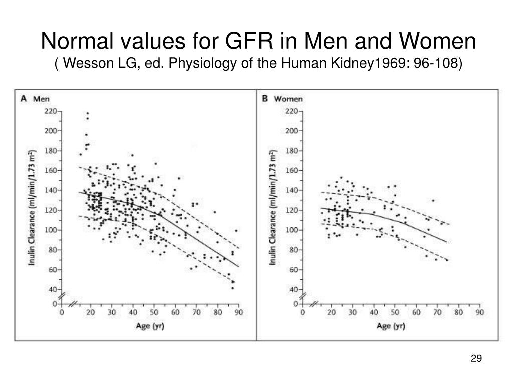 Normal values for GFR in Men and Women