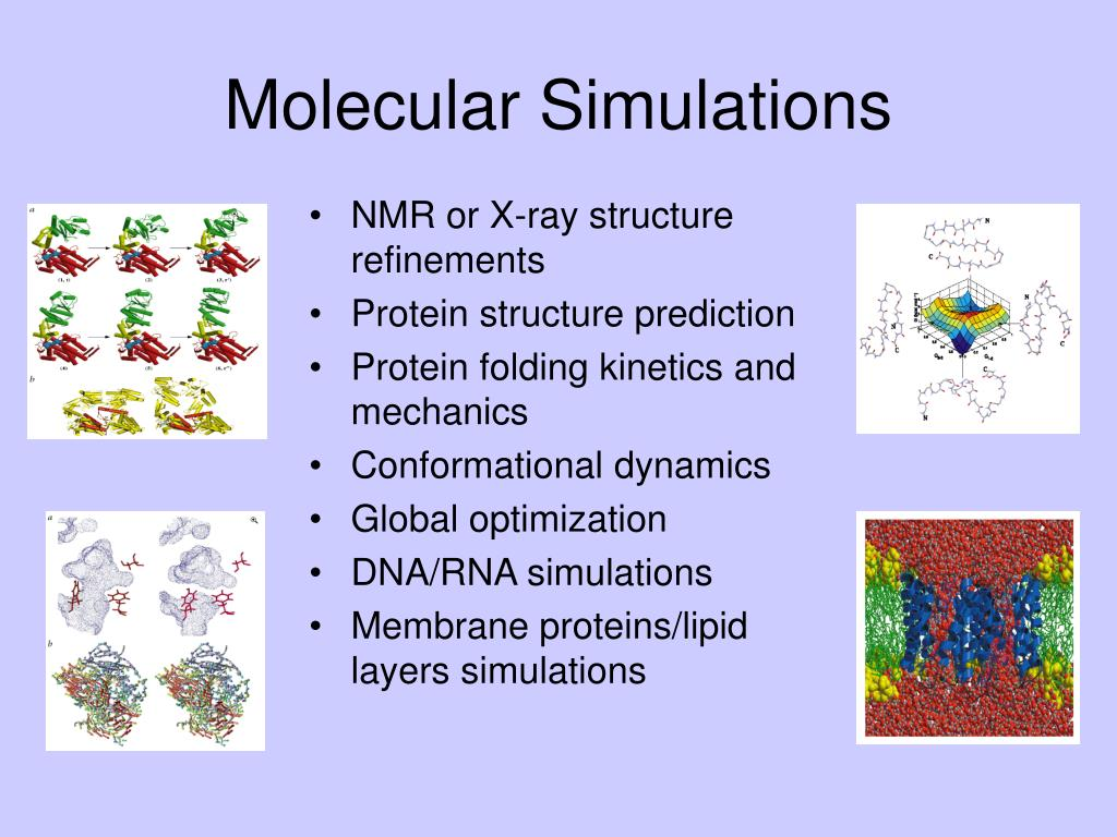 NMR or X-ray structure refinements