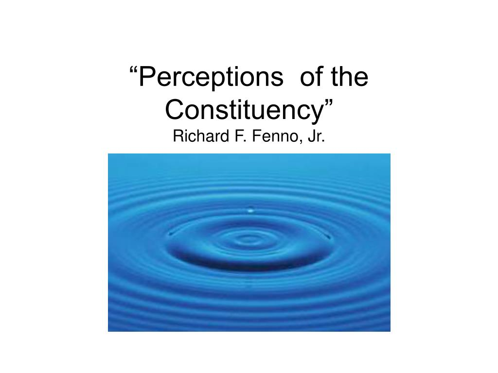 """""""Perceptions  of the Constituency"""""""