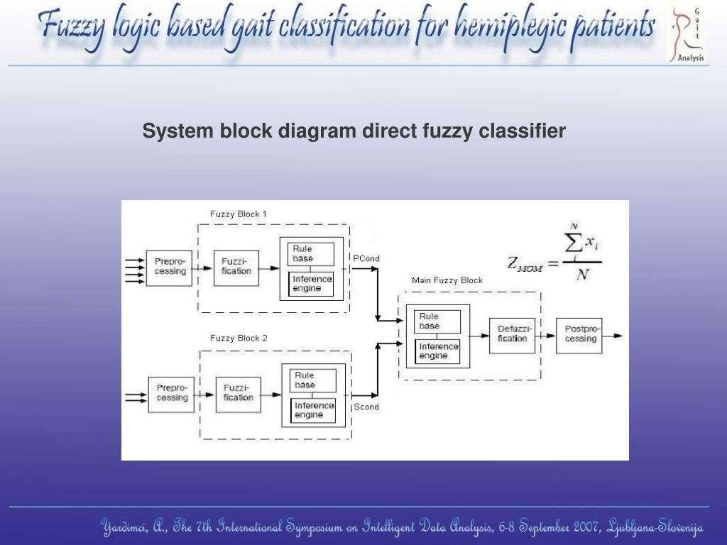 System block diagram direct fuzzy classifier