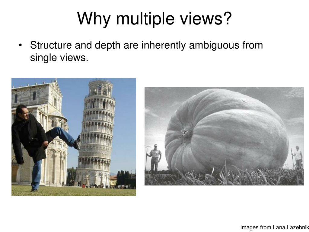 Why multiple views?