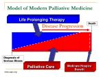 model of modern palliative medicine