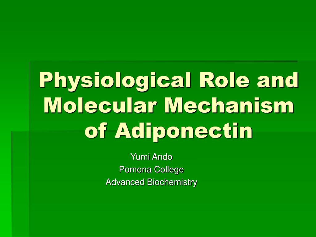 physiological role and molecular mechanism of adiponectin l.
