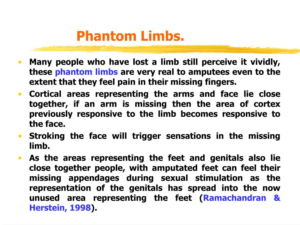 Phantom Limbs.