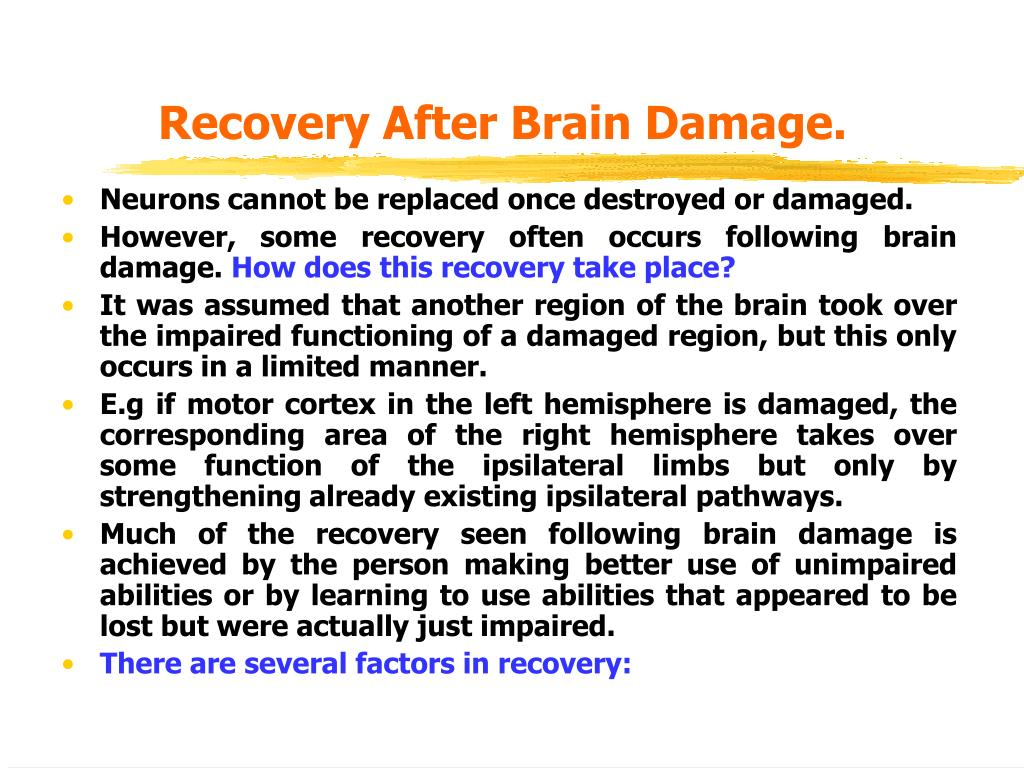 Recovery After Brain Damage.