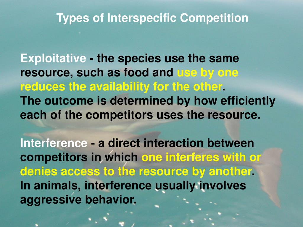 Types of Interspecific Competition