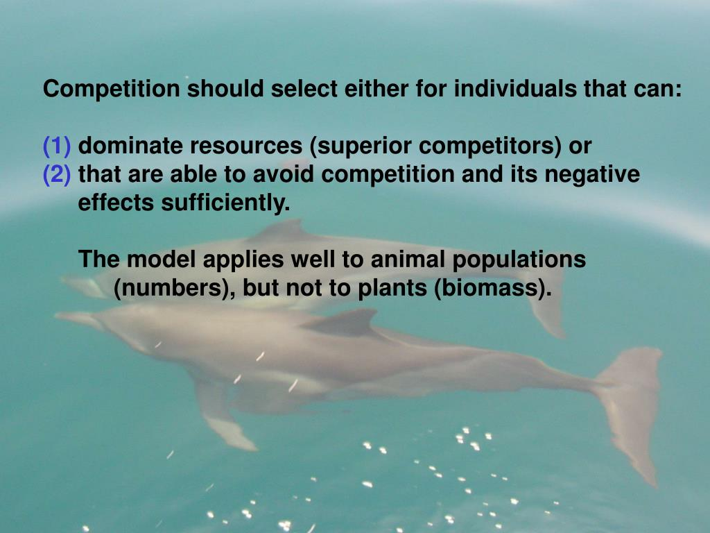 Competition should select either for individuals that can: