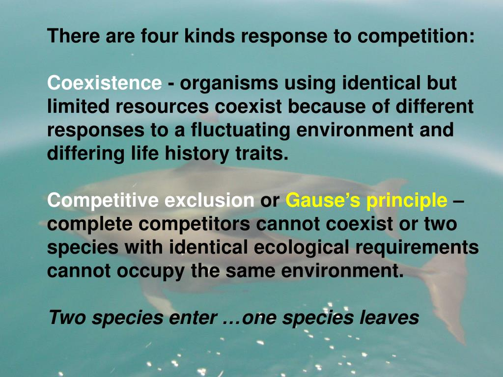 There are four kinds response to competition: