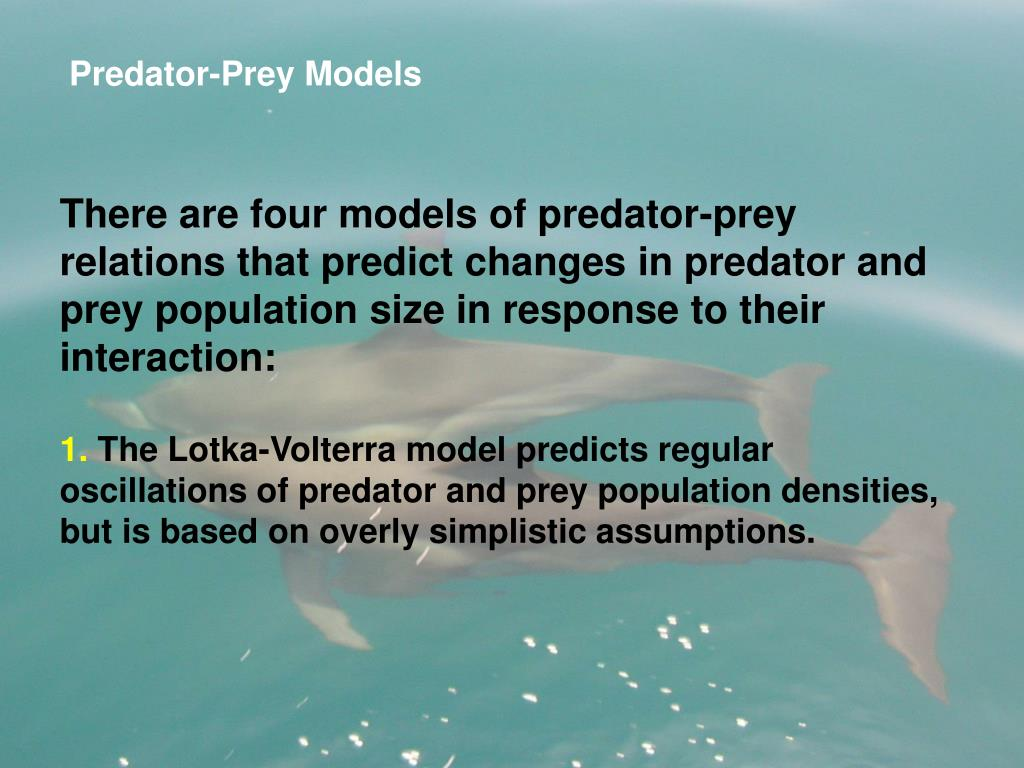 Predator-Prey Models