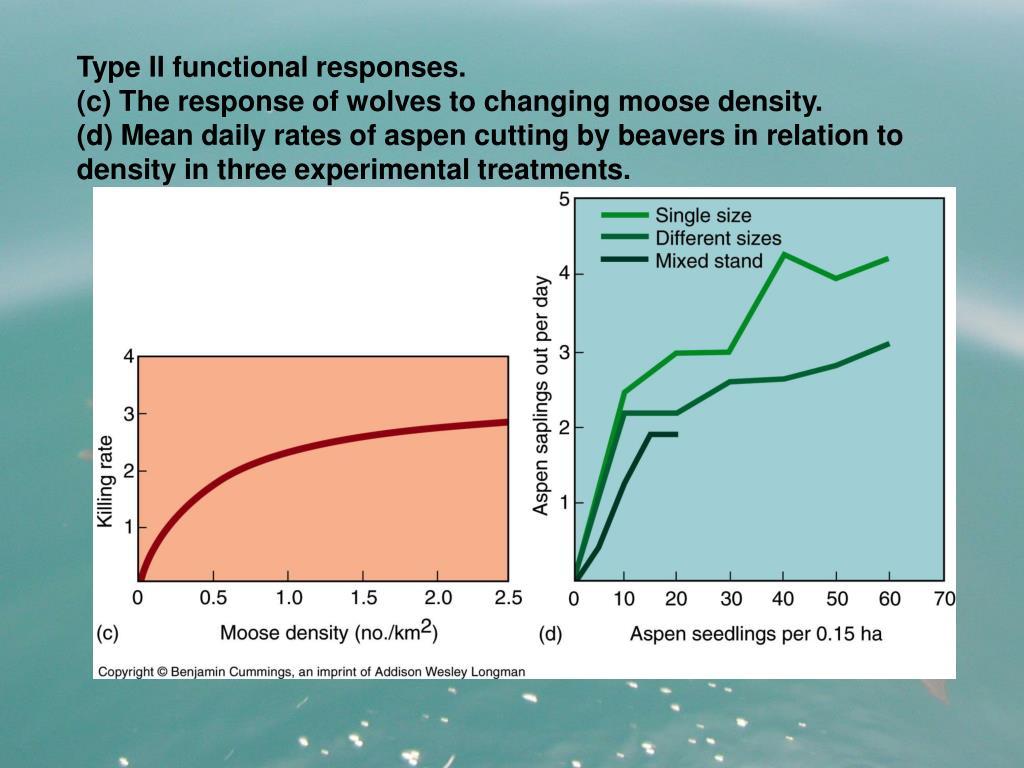 Type II functional responses.