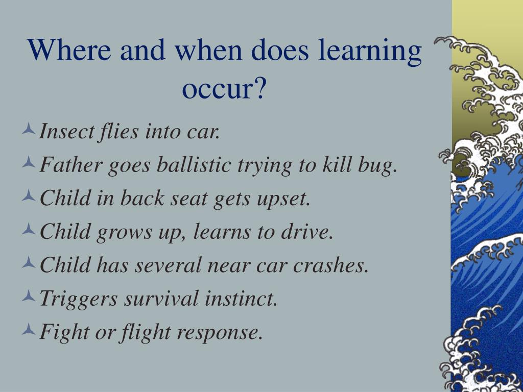 Where and when does learning occur?