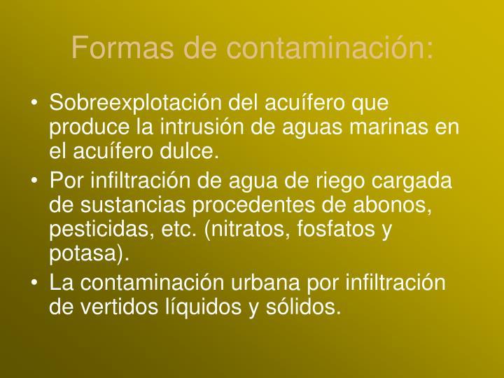 Formas de contaminación: