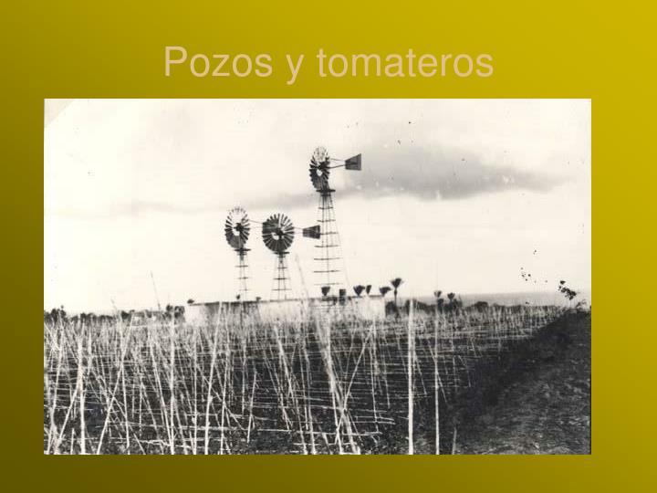 Pozos y tomateros